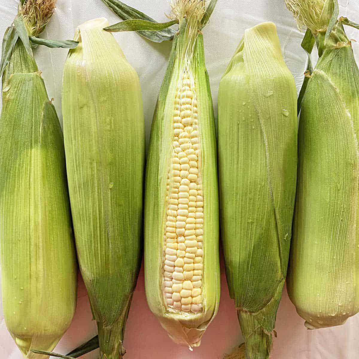 Five ears of unshucked corn